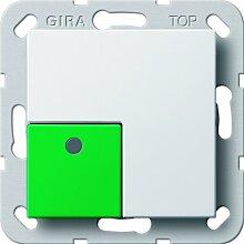 Gira 290803 Anwesenheitstaster grün System 55, reinweiß
