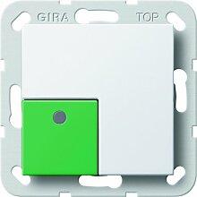 Gira 590803 Anwesenheitstaster grün System 55, reinweiß