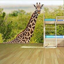 Giraffe Wandbild Safari Tier Foto-Tapete Kinder Schlafzimmer Haus Dekor Erhältlich in 8 Größen Mittel Digital