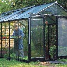 Glas-Gewächshaus R306 H-Expert-Retro 13,62 m²
