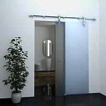 Glas-Schiebetür FROST in 90 x 205 cm