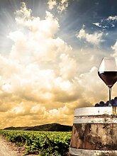 Glas-Spritzschutz Rotwein Natur View mit