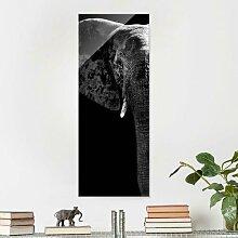Glasbild Afrikanischer Elefant in Schwarz/Weiß