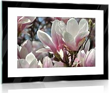 Glasbild Blumen in Schwarz/Weiß/Rosa 17 Stories
