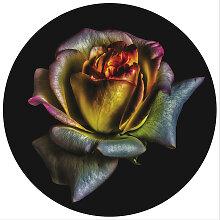 GLASBILD Blumen