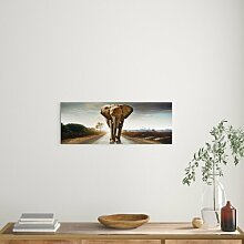 Glasbild Elephant, Kunstdruck World Menagerie