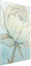 Glasbild Englische Rose in Pastell