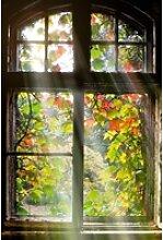 Glasbild FENSTER MIT LAUB (LB 80x120 cm)