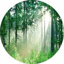Glasbild Forest Harmony IV Alpen Home