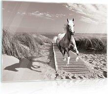 Glasbild Galoppierendes Pferd Alpen Home