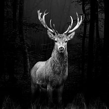 Glasbild Grey Deer Head Alpen Home