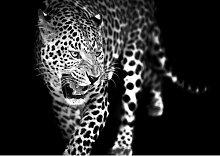 Glasbild Leopard Bloomsbury Market