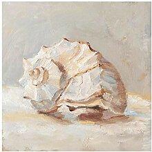 Glasbild Moderne Kunst Muschel-Studie II Bild aus