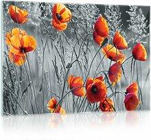 Glasbild Mohnblumen in Schwarz/Weiß/Orange 17