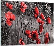 Glasbild Mohnblumen in Schwarz/Weiß/Rot 17