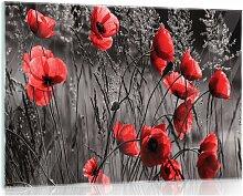 Glasbild Mohnblumen in Schwarz/Weiß/Rot 17 Stories