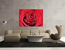 Glasbild Motiv Rote Rosen Wohnzimmer Modern