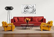 Glasbild Motiv Weiße Rosen Wohnzimmer Modern