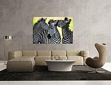 Glasbild Motiv Zebra Wohnzimmer Modern querformat