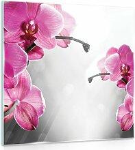 Glasbild Orchidee Brayden Studio