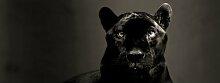 Glasbild Panther, Kunstdruck Brayden Studio