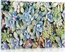 Glasbild Pflanze
