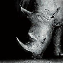 Glasbild Rhino East Urban Home