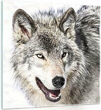 Glasbild Schnee Wolf Alpen Home