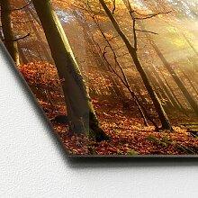 Glasbild Sun & Forest II Alpen Home