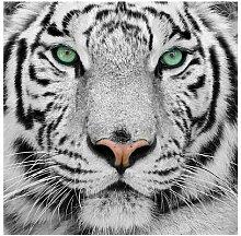 Glasbild Tiger in Schwarz/Weiß/Rosa Ebern Designs