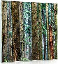 Glasbild Wald Alpen Home Größe: 30 cm H x 30 cm B