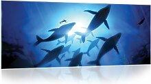 Glasbild Wale Longshore Tides Größe: 60,5 cm H x