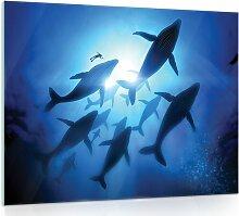 Glasbild Wale Longshore Tides Größe: 60 cm H x