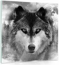 Glasbild Wolf Alpen Home Format: 40 cm H x 40 cm B