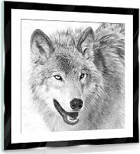 Glasbild Wolf Alpen Home Größe: 40 cm H x 40 cm B