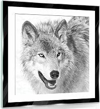 Glasbild Wolf Alpen Home Größe: 50 cm H x 50 cm B