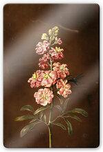 Glasbilder - Glasbild Dietzsch - Eine rosa Garten Levkkoje