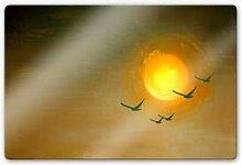 Glasbilder - Glasbild Melz - Fly
