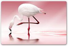 Glasbilder - Glasbild Reindl - Pink Flamingo