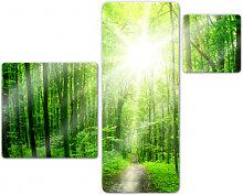 Glasbilder - Glasbild Sunny Forest (3-teilig)