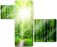 Glasbilder - Glasbild Sunny Forest Variation