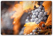 Glasbilder - Glasbild Wein im Herbst