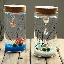 Glasflasche Glas Hydrokultur Terrarienbehaelter