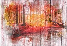 Glatte Fototapete Herbstlicher Wald
