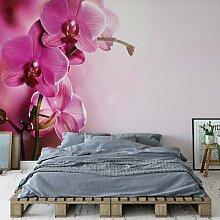 Glatte Fototapete Sherlyn Brayden Studio