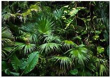 Glatte Fototapete Sonniger Dschungel