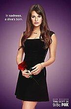 Glee Season 5 Poster auf
