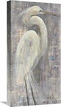 Global Gallery Albena Hristova 'Coastal Egret