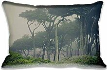 Gloomy Background Pillow Cases Protector 16x24 inch Sofa Bed Home D¨¦cor Standard Size Pillow Covers(Twin Sides)