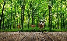 Glorious.Q Fototapete Grüner Dschungel